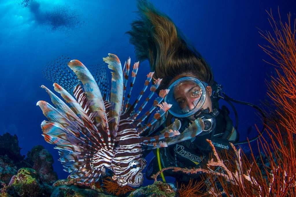 Reinero-Socorro-Libro-Ocean-Life-02
