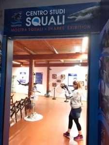 Centro Studi Squali