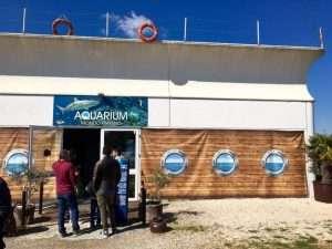 Entrata Centro Studi Squali