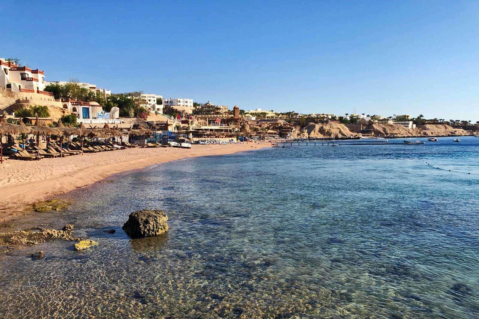 Sharm El Sheik Francesca Reinero Bioterra Immersioni